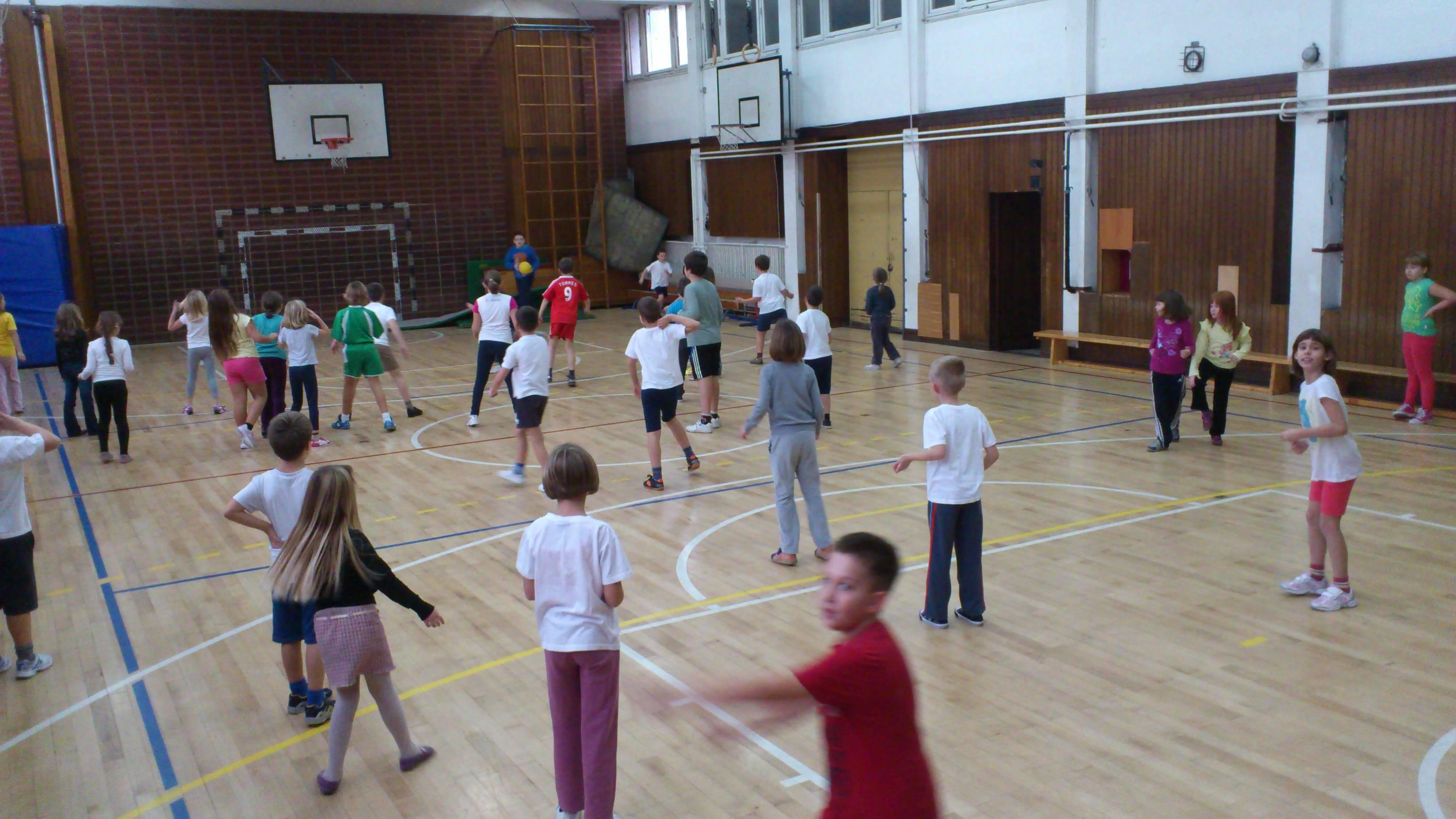 Osnovna Skola Dragutina Domjanica Zagreb Vikend U Sportske Dvorane